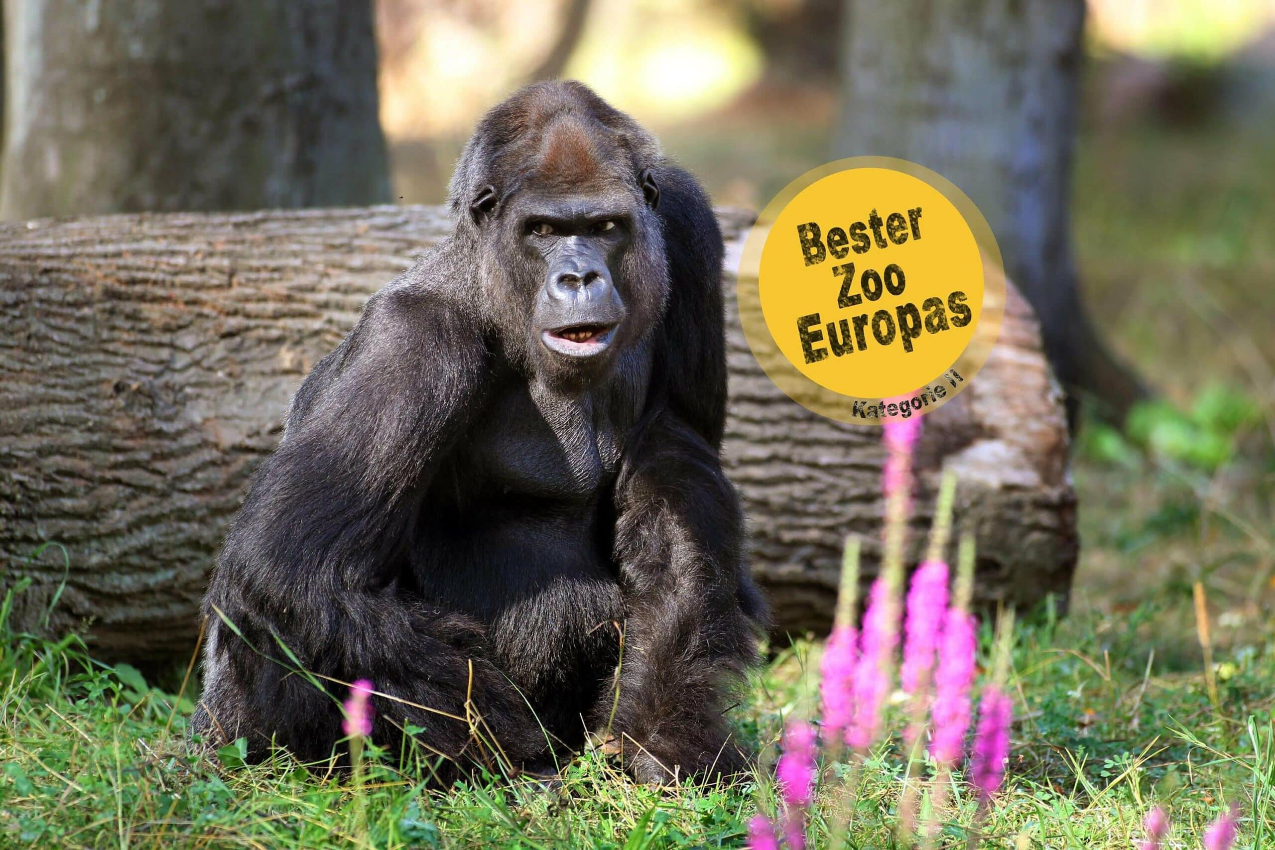 Zoo besuch Rostock Camping Ostsee